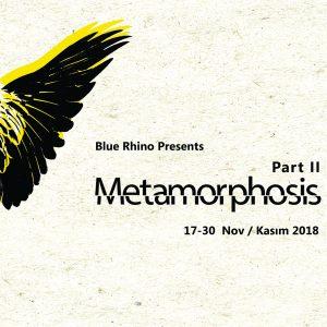 Metamorphosis II Blue Rhino