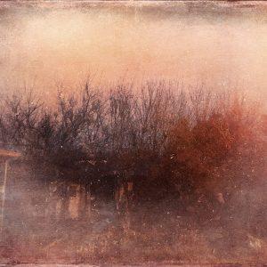Umut Erbaş, photography, 2020, small