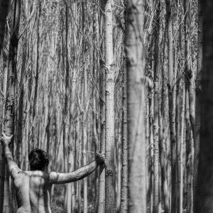 majid hojati, photography, black and white, fine art paper, 2013